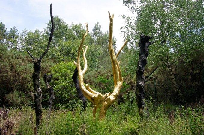 arbre d'or forêt de brocéliande